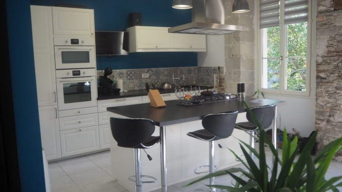 Investment property house / villa Monnieres 187490€ - Picture 1