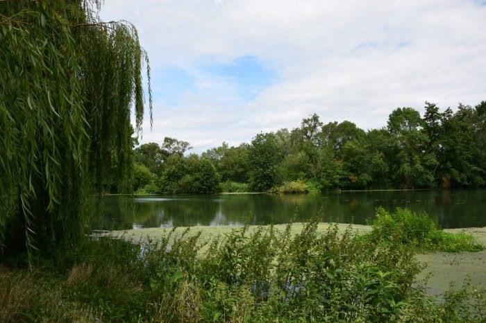 Vente maison / villa Bazouges-sur-le-loir 362250€ - Photo 5