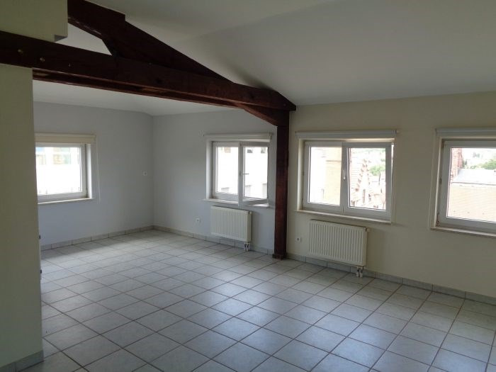 Location appartement Pfaffenhoffen 570€ CC - Photo 1