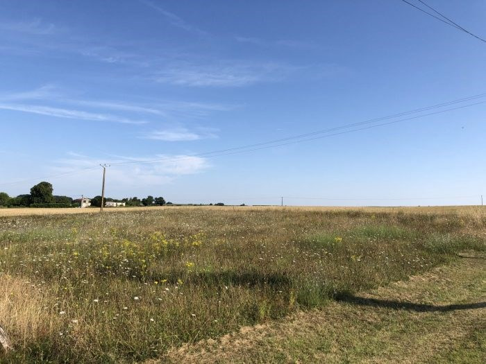 Vente terrain Saint-ciers-du-taillon 30 000€ - Photo 1
