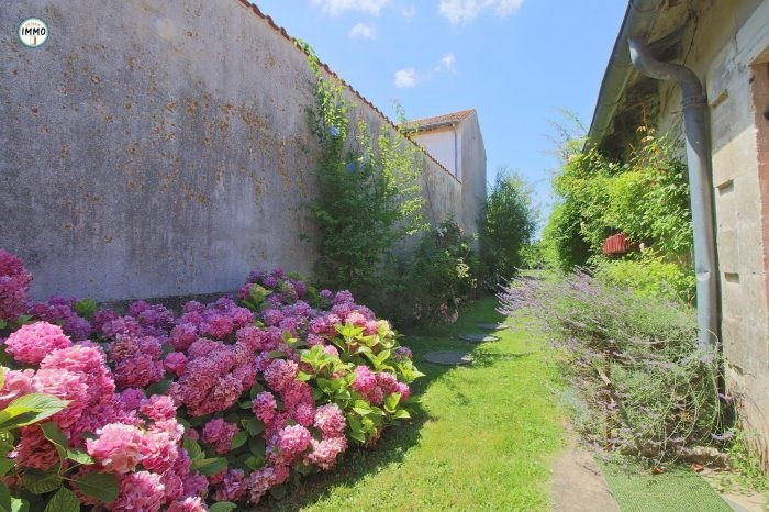 Vente maison / villa Saint-fort-sur-gironde 186 250€ - Photo 4