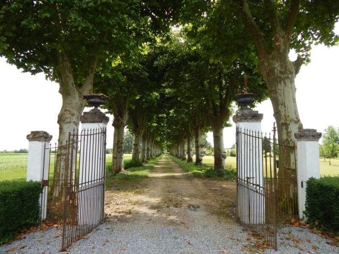 Vitalicio  castillo Mont-de-marsan 160000€ - Fotografía 18
