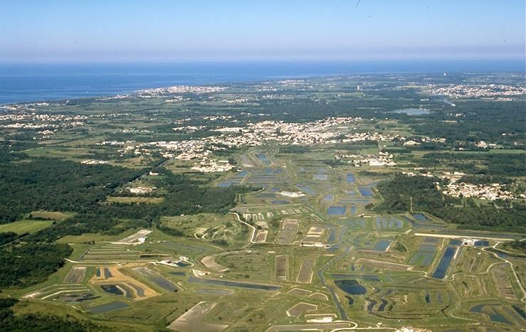 Terrain a bâtir dolus d oleron - 350 m²