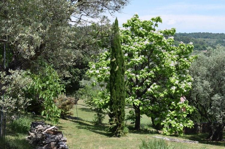 Venta de prestigio  casa Fayence 997000€ - Fotografía 33
