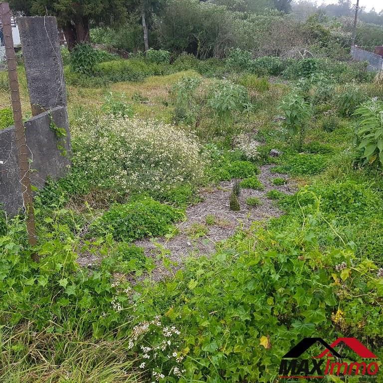 Vente terrain Le tampon 129750€ - Photo 3