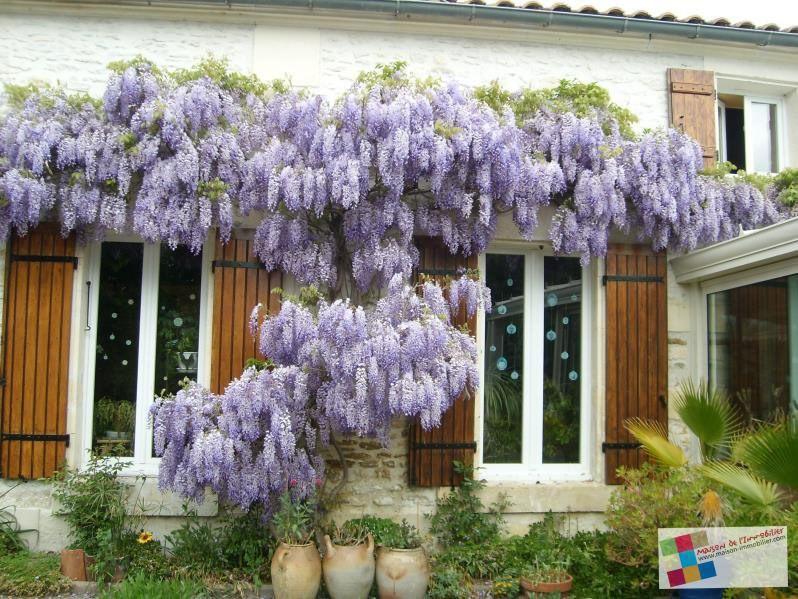 Vente maison / villa Cherves richemont 256800€ - Photo 10