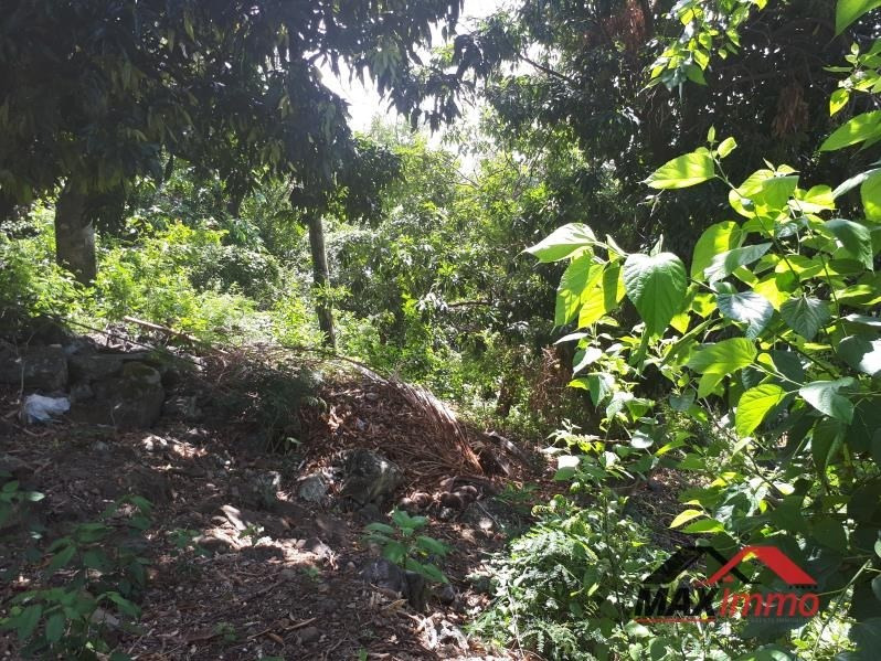 Vente terrain Ravine des cabris 220000€ - Photo 3