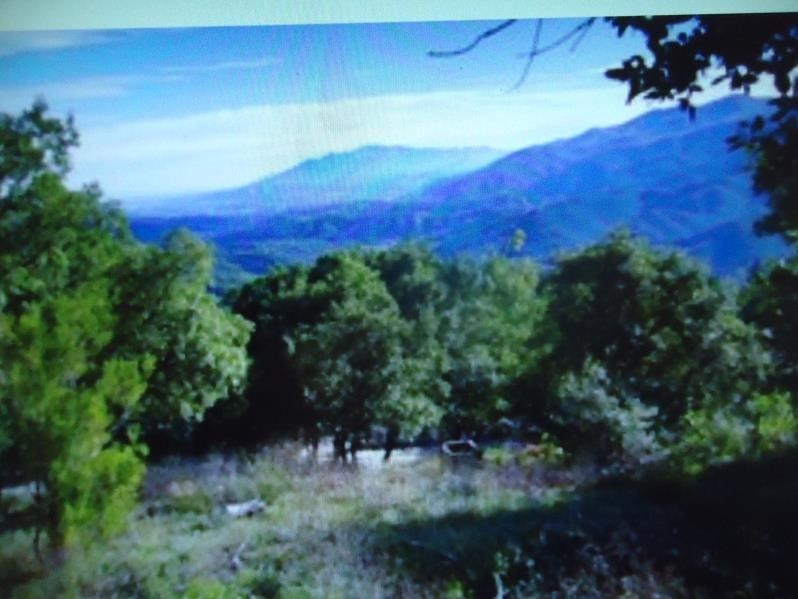 Verkoop  stukken grond Amelie les bains palalda 85000€ - Foto 1