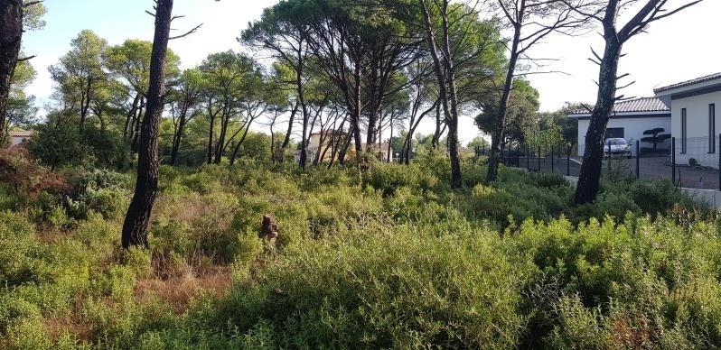 Vente terrain Le cannet des maures 145000€ - Photo 2