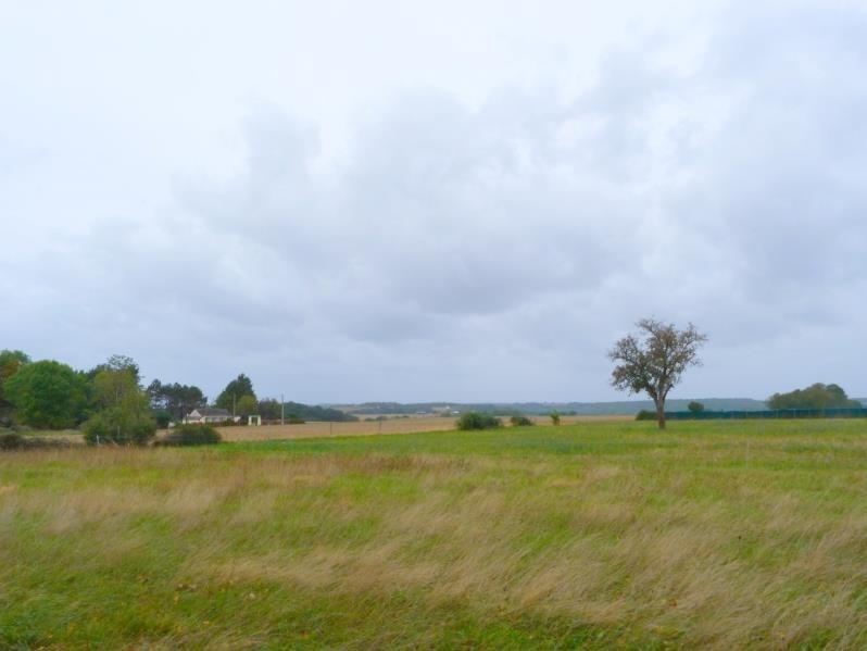 Sale house / villa Charny oree de puisaye 63600€ - Picture 2