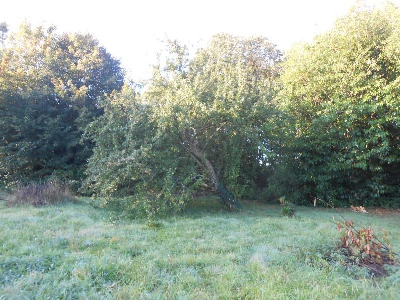 Vente terrain Plogastel st germain 65400€ - Photo 1