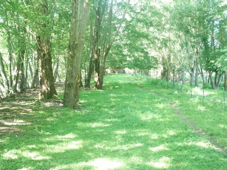 Sale site Charny oree de puisaye 169100€ - Picture 6
