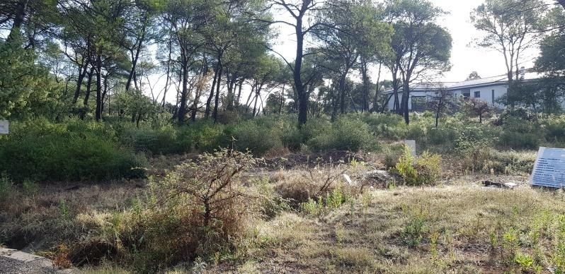 Sale site Le cannet des maures 169 000€ - Picture 3