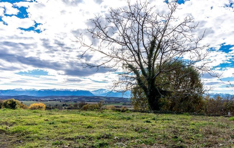 Vente terrain Andoins 84700€ - Photo 1