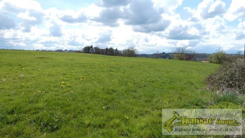 Terrain agricole et const