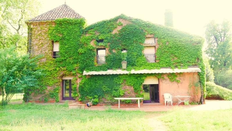 Deluxe sale house / villa Toulouse 795 000€ - Picture 3