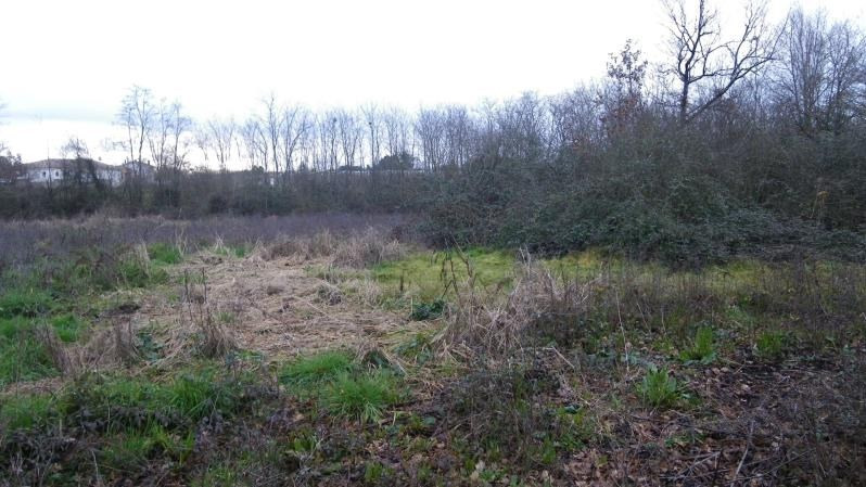 Vente terrain Villemade 39 000€ - Photo 3