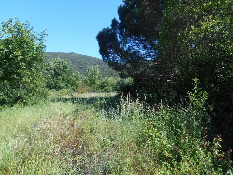 Vente terrain Reynes 194 000€ - Photo 3