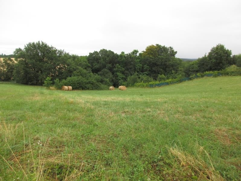 Sale site St nauphary 45 000€ - Picture 3
