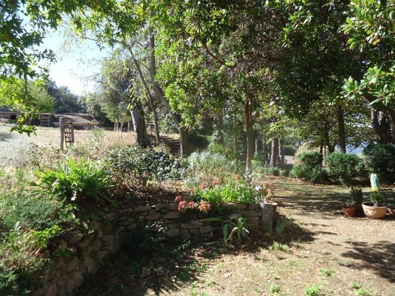 Deluxe sale house / villa Ceret 1 295 000€ - Picture 9