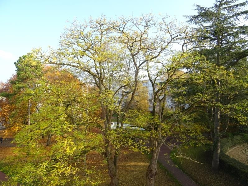 Vente appartement Marly le roi 192000€ - Photo 8