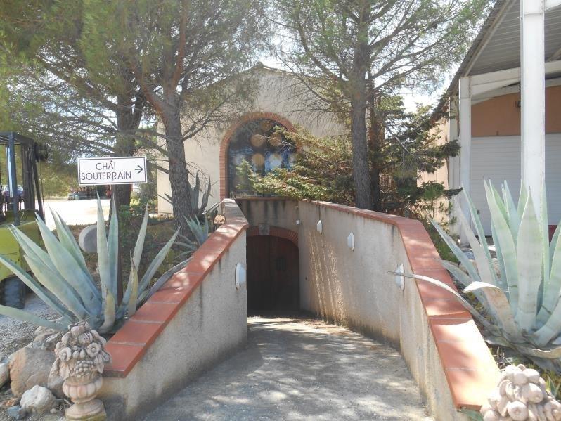 Vente de prestige maison / villa Passa 1102000€ - Photo 7