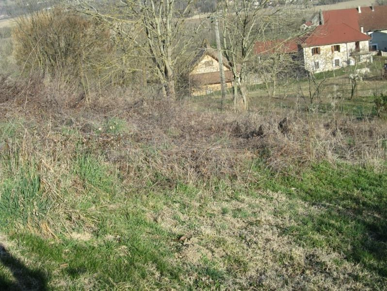 Venta  terreno Parves-nattages 61000€ - Fotografía 2