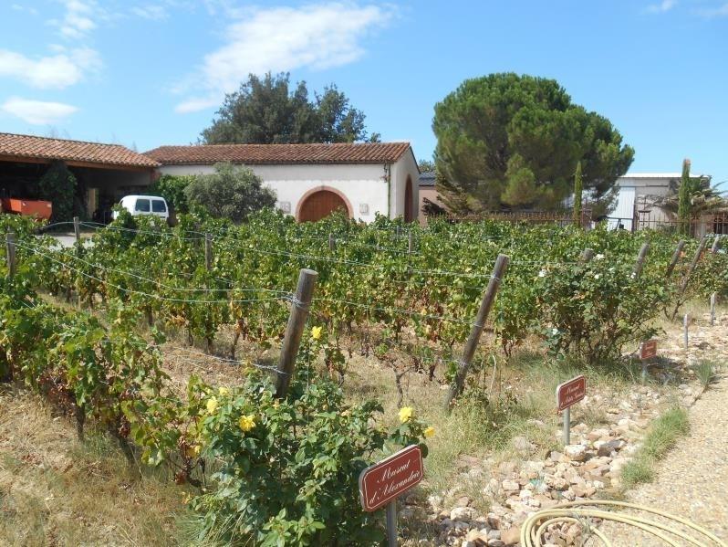 Vente de prestige maison / villa Passa 1102000€ - Photo 10