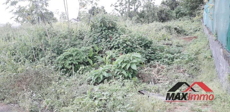 Vente terrain Le tampon 189000€ - Photo 3