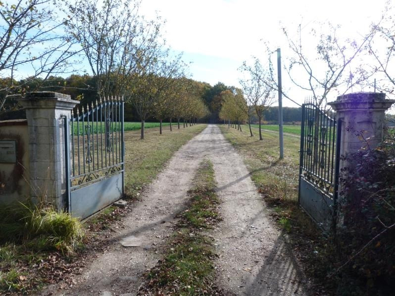 Deluxe sale house / villa Secteur bleneau 950 000€ - Picture 3