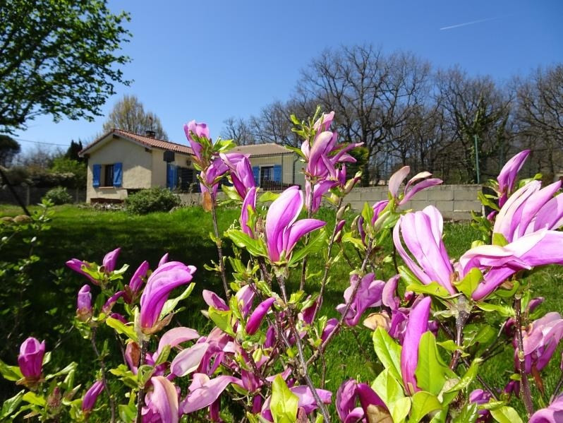 Vente maison / villa Ste foy de peyrolieres 299250€ - Photo 8