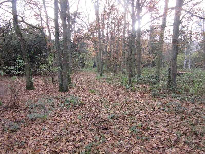 Vente terrain Bouray sur juine 35000€ - Photo 1