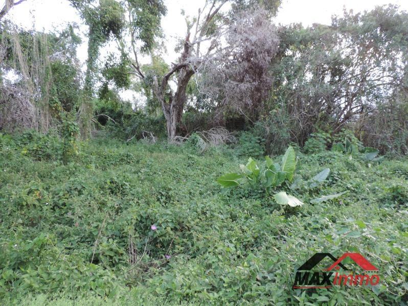 Vente terrain Saint benoit 189060€ - Photo 2