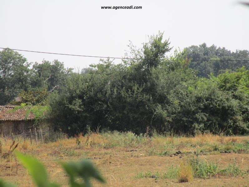 Vente terrain Souvigne 33 200€ - Photo 1