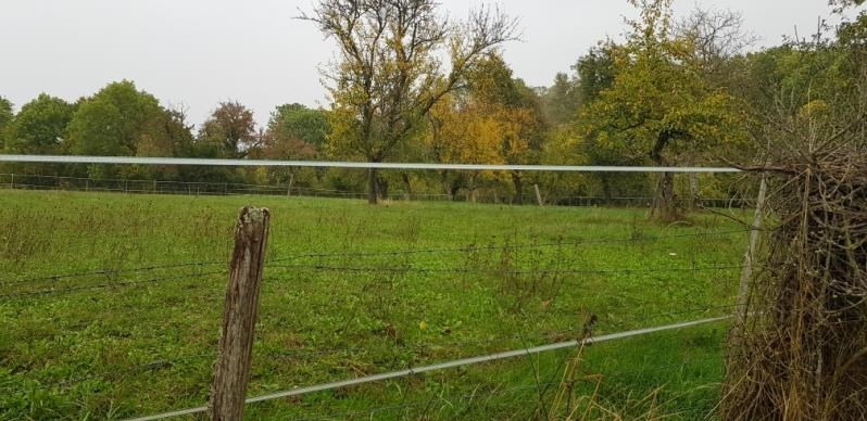 Vente terrain Pourrain 35000€ - Photo 2