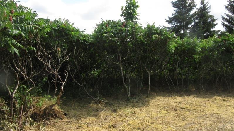 Vente terrain D huison longueville 95000€ - Photo 2