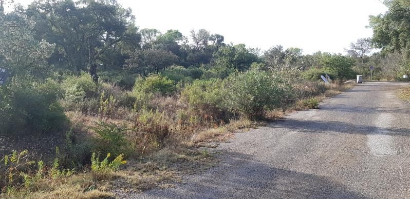 Vente terrain Le cannet des maures 122 000€ - Photo 4
