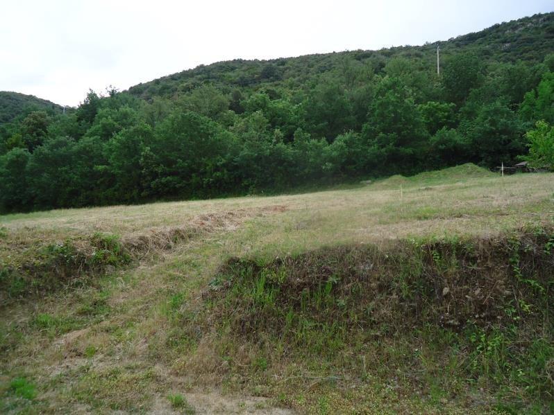 Verkoop  stukken grond Ceret 184000€ - Foto 2