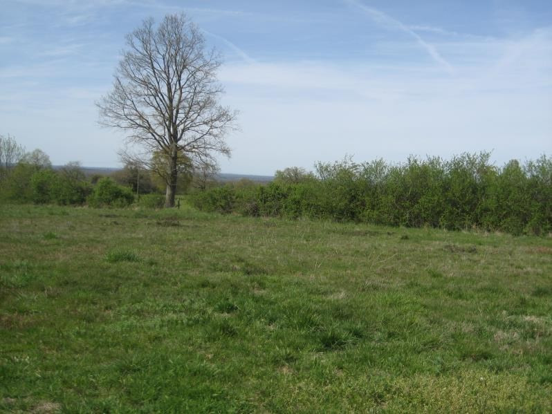 Sale site Franchesse 9 600€ - Picture 1