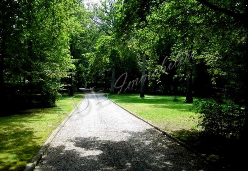 Vente de prestige maison / villa Lamorlaye 940000€ - Photo 9