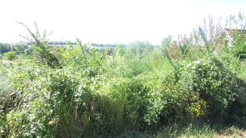 Vente terrain Coulommiers 75 000€ - Photo 1