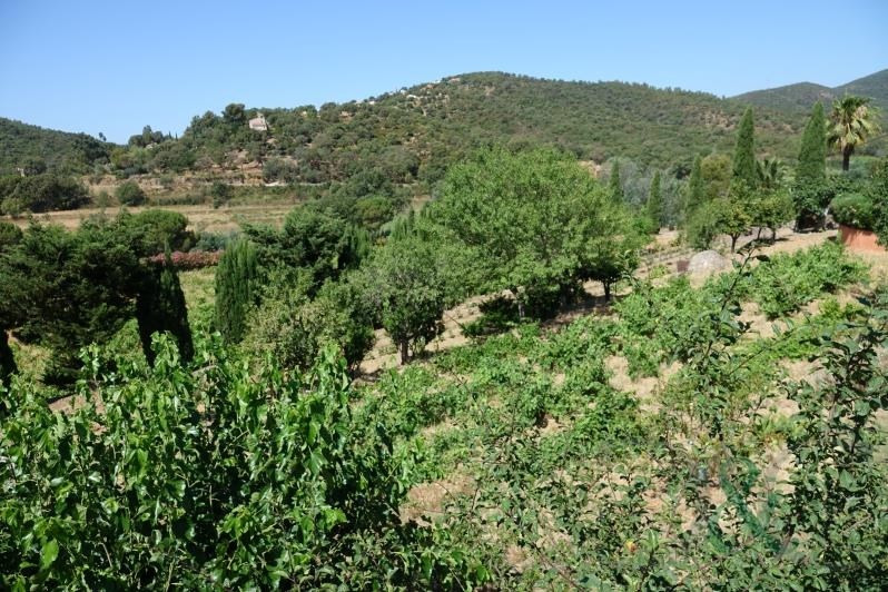 Vente de prestige maison / villa Bormes les mimosas 1350000€ - Photo 9