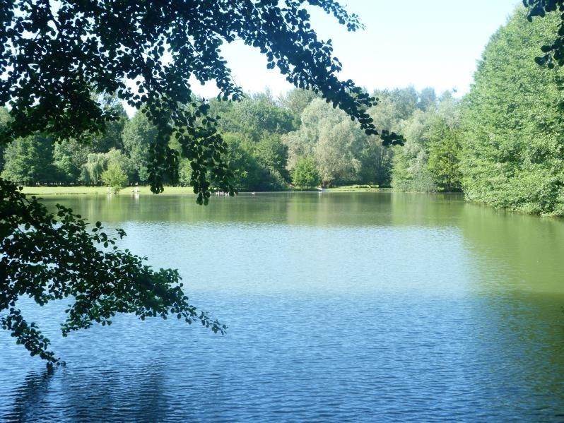Sale site Charny oree de puisaye 169100€ - Picture 1