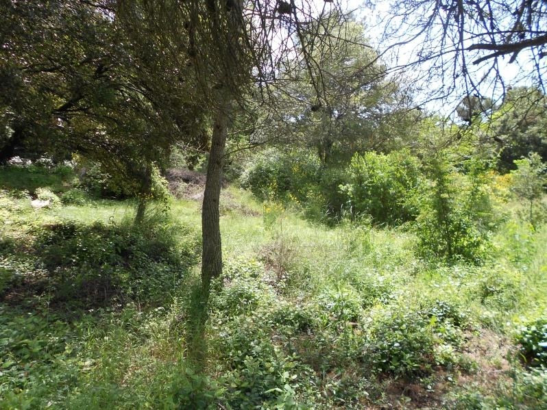 Vendita terreno Nimes 216000€ - Fotografia 2