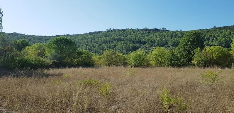Vente terrain Le luc 105 000€ - Photo 2