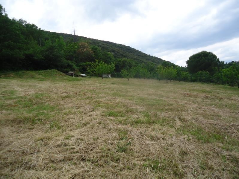 Vente terrain Ceret 177 000€ - Photo 1