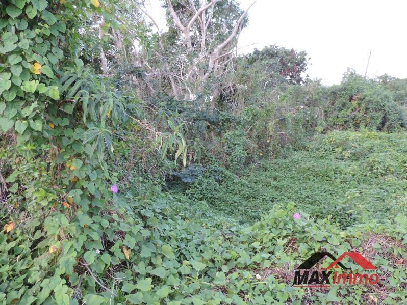 Vente terrain Saint benoit 189060€ - Photo 3
