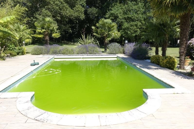 Sale house / villa Cavignac 295000€ - Picture 4