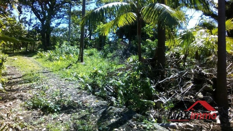 Vente terrain Le piton ste rose 99 900€ - Photo 1