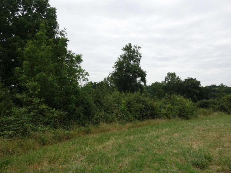 Vente terrain Ussac 64500€ - Photo 3